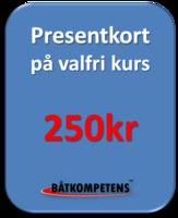 Presentkort 250kr
